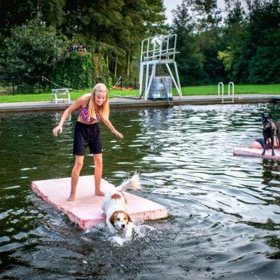 <strong>Honden zwemmen</strong><br><p>Honden en hun baasje zwemmen samen in openluchtbad de Wispel - Tijnje</p>